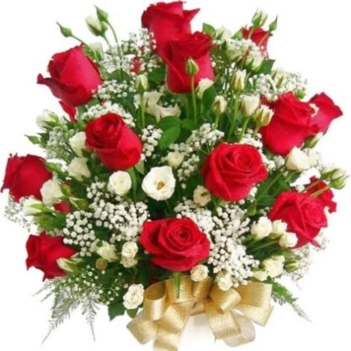 hoa tình yêu tân bình