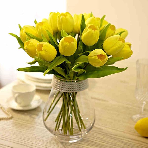 hoa tulip 8-3
